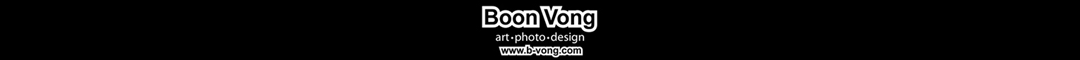 Boon Vong - Journal Logo